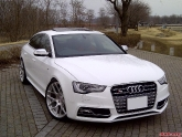 Audi S5 Sport Back with HRE Wheels P40SC Conical