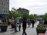 Bullrun Day 1 - Montreal to Boston