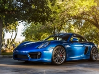 Project Porsche 981 Cayman S