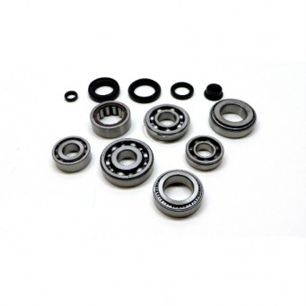 Internal Transmission Bearings