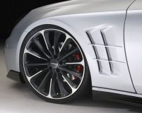 Wald International Black Bison Fender Set Mercedes-Benz CLS63 04-07