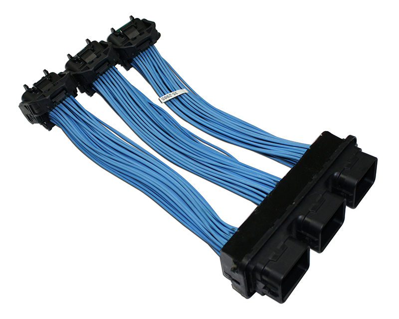 AEM ECU Extension Harness Honda Civic DX | EX | LX 1.8L | 1799ccL4 ...