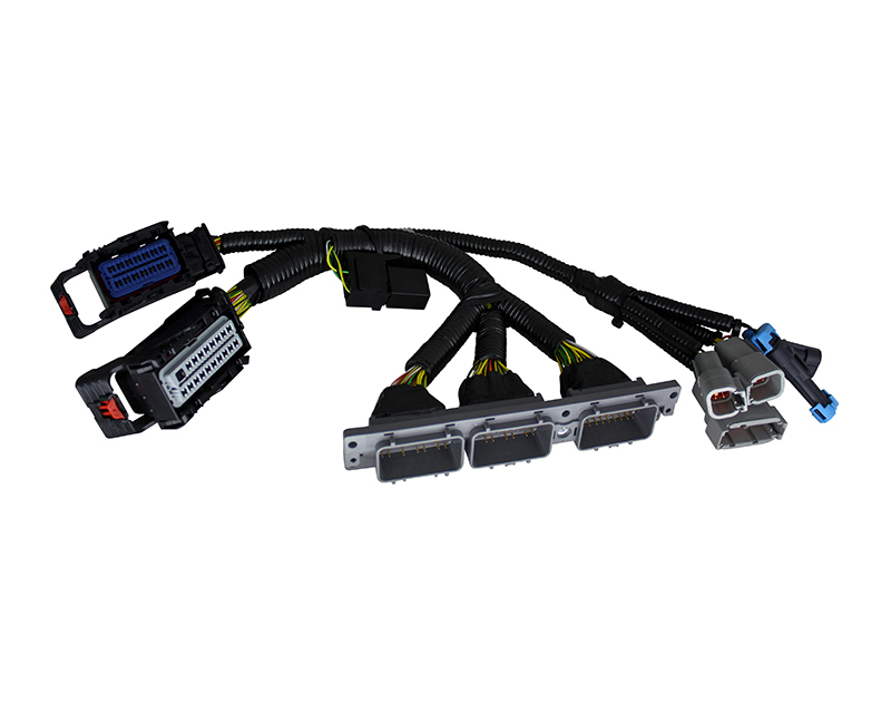 Image of AEM Infinity Plug Play Stand-Alone EMS Adapter Harness CAN Bus Enabled BMW E46 M3 MT 01-06