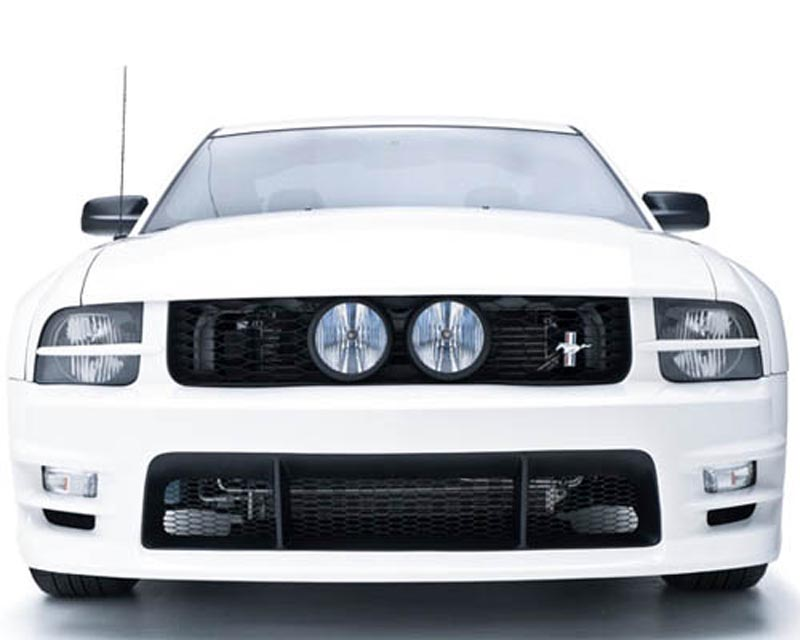 3dCarbon GT E-Style Grille Ford Mustang GT 05-09 - 691039