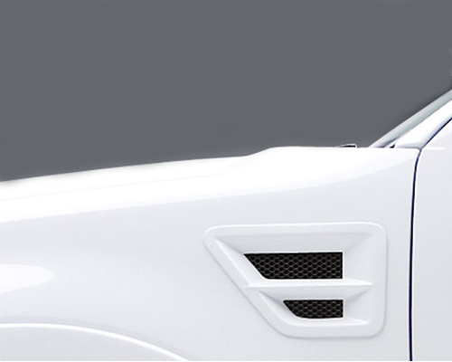 3dCarbon Front Fender Vent W/Grille Pair Type I With Horizontal Cross Bar Ford F-150 04-08 - 691106