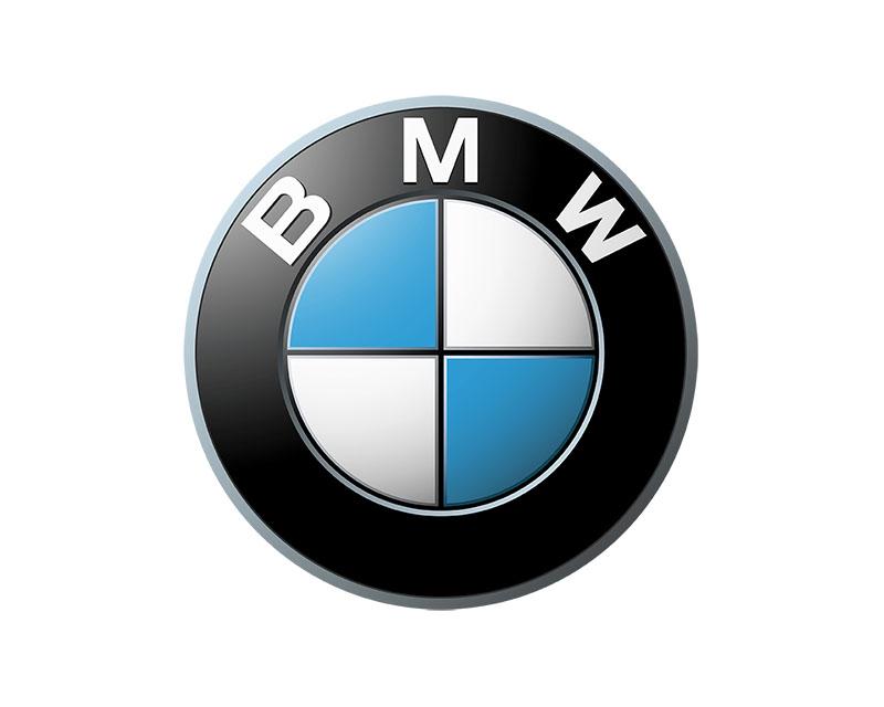 Genuine BMW Grille BMW X5 Front Left 2000-2004 - 51-13-8-250-051