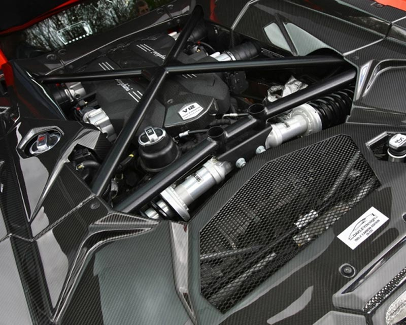 Oakley Design Carbon Fiber Engine Bay Cover Set Lamborghini Aventador 11+ - OD/LP700/CFA/016x