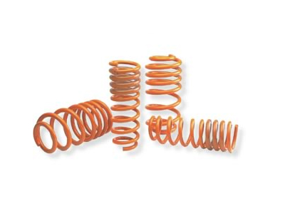 Neuspeed Race Springs Audi A4 Quattro 1.8T 4cyl 2001 - 55.02.44