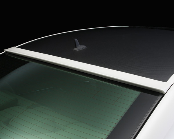 Wald International Black Bison Roof Wing Mercedes-Benz S-Class 10-12 - W216.RW.07